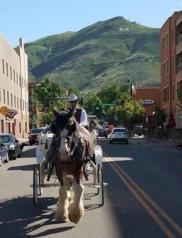 Carriage Rides - Golden Colorado